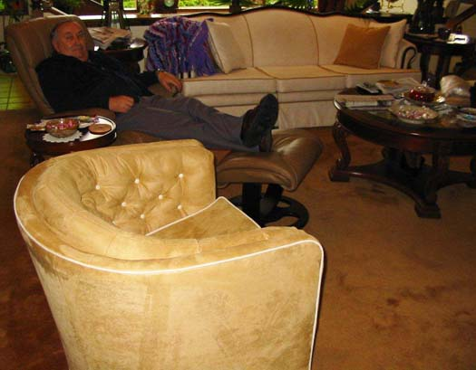 upholstered chair at home near couch